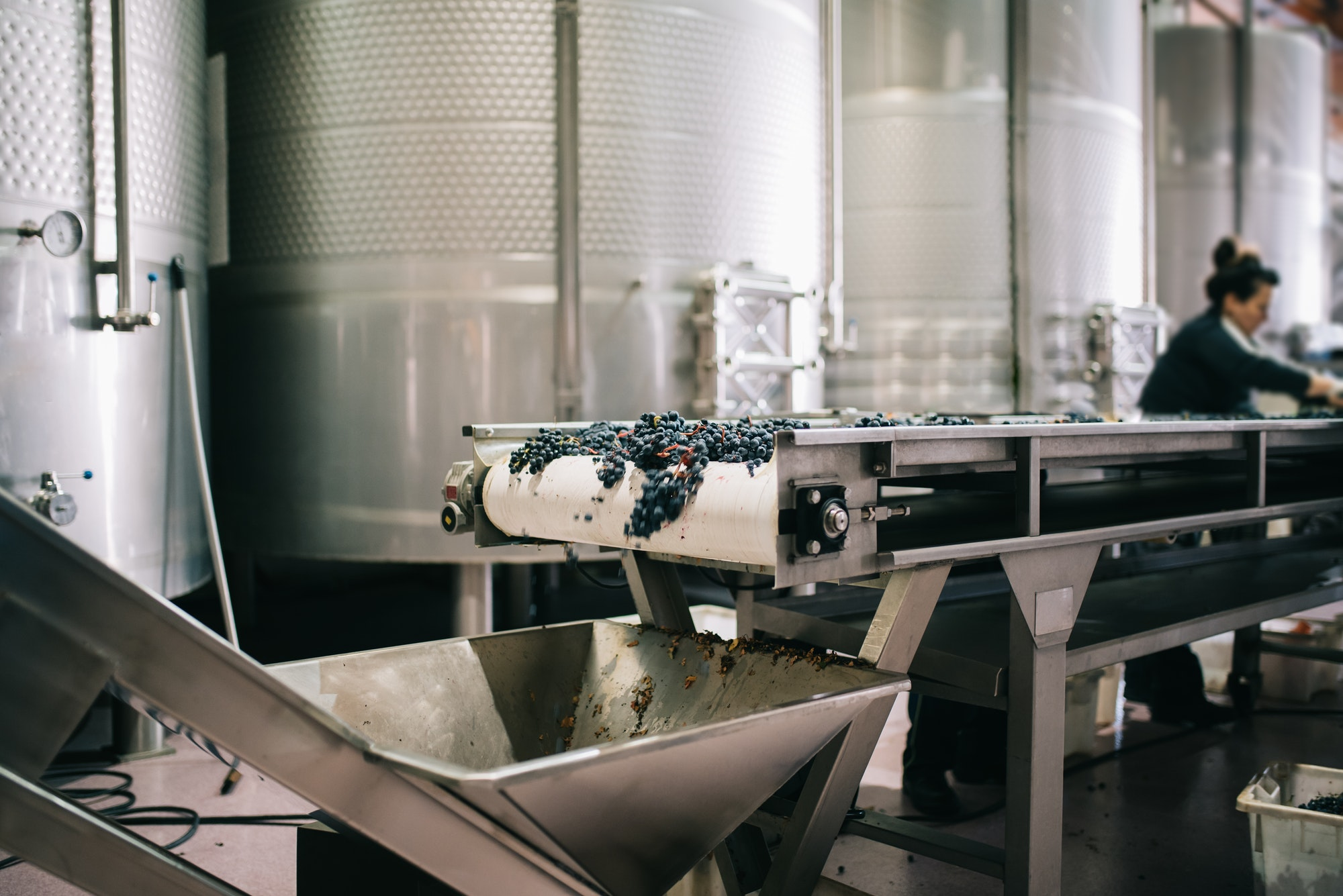 How wine is made: Part I